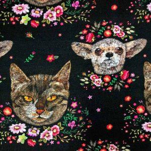 Koopjes hund en katt