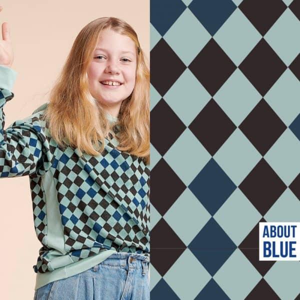 About Blue - Harlequin (sponge) 800 Wonders of life5 harlequin sponge2