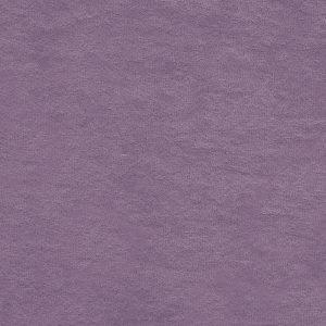 C. Pauli- Rhapsody Terry cloth/ spons